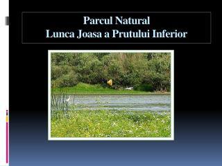 Parcul Natural  Lunca Joasa a Prutului Inferior