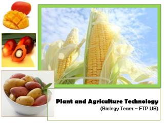 Plant and Agriculture Technology ( Biology Team – FTP UB )