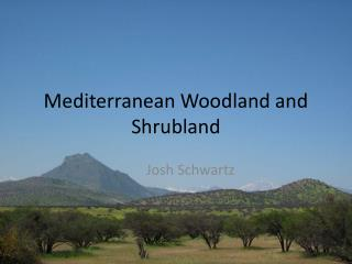 Mediterranean Woodland and  Shrubland