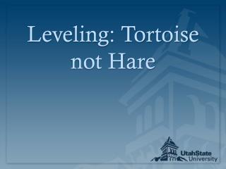 Leveling: Tortoise not Hare