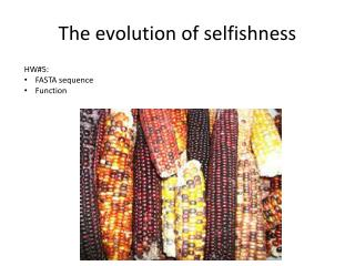 The evolution of selfishness