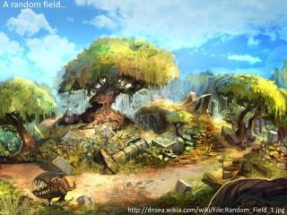 http:// dnsea.wikia.com /wiki/File:Random_Field_1.jpg