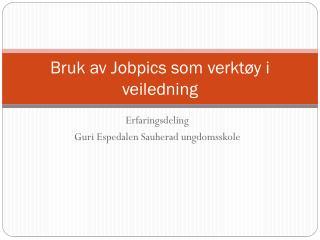 Bruk av  Jobpics  som verktøy i veiledning