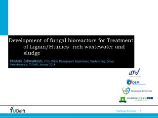 Development of fungal bioreactors for Treatment of Lignin/ Humics - rich wastewater and sludge
