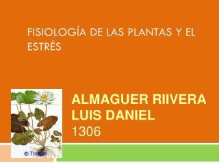 FISIOLOGÍA DE LAS PLANTAS Y EL ESTRÉS