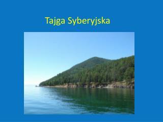 Tajga Syberyjska