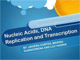 Nucleic Acids, DNA Replication and Transcription