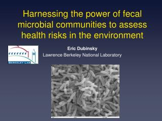 Harnessing the power of fecal microbial communities to assess health risks in the environment