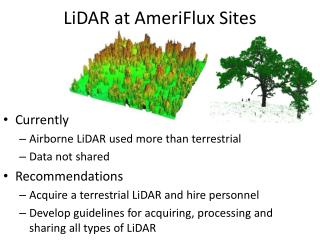 LiDAR  at AmeriFlux S ites