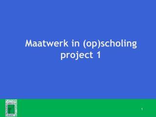 Maatwerk in (op)scholing project 1