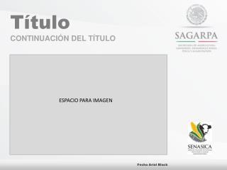 Título C ONTINUACIÓN DEL TÍTULO