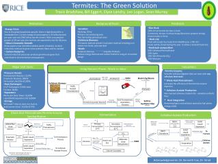 Termites: The Green Solution