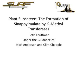Plant Sunscreen: The Formation of  Sinapoylmalate  by  O -Methyl  Transferases