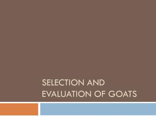 Selection and Evaluation of  Goats