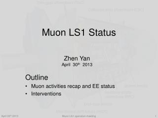 Muon LS1 Status