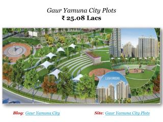Gaur Yamuna City Plots Call 8800994224