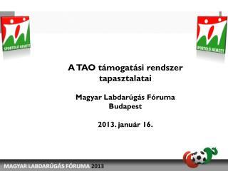 A TAO támogatási rendszer tapasztalatai Magyar Labdarúgás Fóruma Budapest 2013.  j anuár 16.