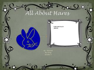 All  About Hares
