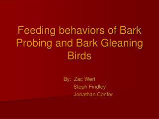 Feeding behaviors of Bark Probing and Bark Gleaning Birds