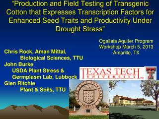 Ogallala Aquifer Program Workshop March 5, 2013 Amarillo, TX