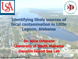 Identifying likely sources of fecal contamination  in  Little Lagoon, Alabama