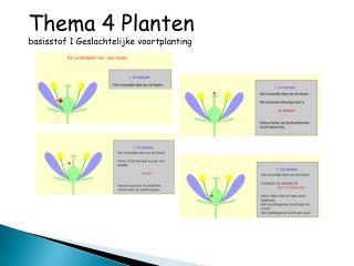 Thema 4 Planten basisstof 1 Geslachtelijke voortplanting