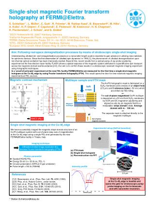 Single - shot magnetic  Fourier  transform holography at FERMI@Elettra .