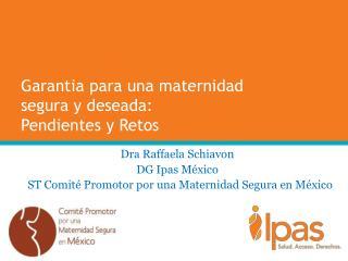 Garantia para una maternidad segura  y  deseada :  Pendientes  y  Retos