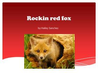 R ockin red fox