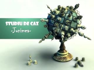 Studiu de caz - Junimea -