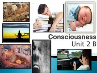 Consciousness Unit 2 B