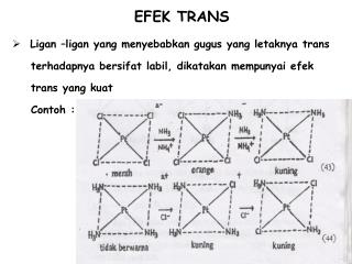 EFEK TRANS
