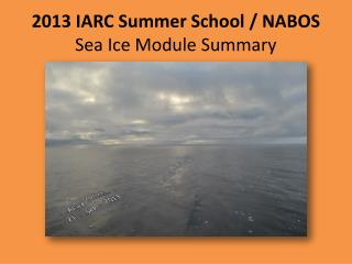 2013 IARC Summer School / NABOS Sea Ice Module Summary