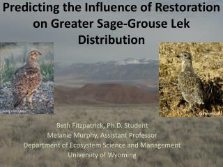 Predicting the  Influence  of Restoration on Greater Sage-Grouse Lek Distribution
