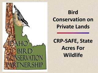 Bird Conservation on Private Lands  CRP-SAFE, State Acres For Wildlife