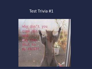 Test Trivia #1