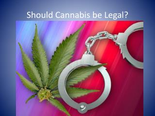 Should Cannabis be Legal?