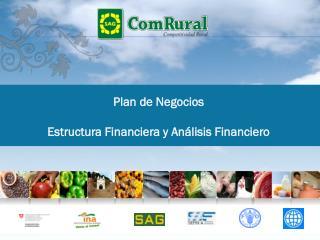 Plan de Negocios Estructura Financiera y Análisis Financiero