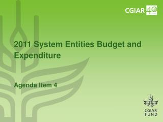 2011 System Entities Budget and Expenditure Agenda Item 4