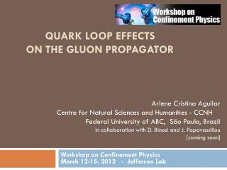 Quark Loop Effects  on the Gluon Propagator