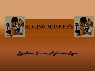 Slicing Monkeys