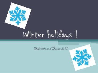Winter  holidays  !