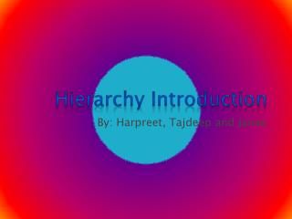 Hierarchy Introduction