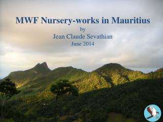 MWF Nursery-works in Mauritius by Jean Claude Sevathian June 2014