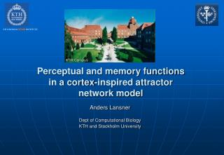 Perceptual and memory functions in a cortex-inspired attractor network model