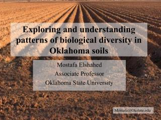 Exploring and  understanding  patterns of biological  diversity in Oklahoma soils