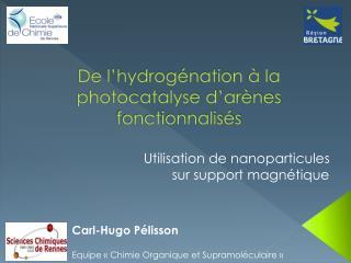 De l'hydrogénation à la photocatalyse d'arènes fonctionnalisés