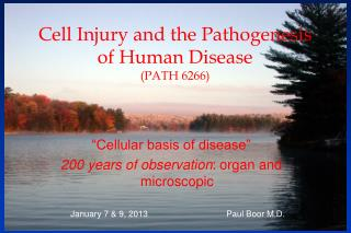 Cell Injury and the Pathogenesis of Human Disease (PATH  6266 )
