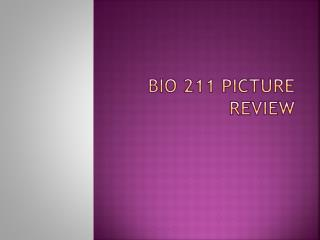 BIO 211 Picture Review