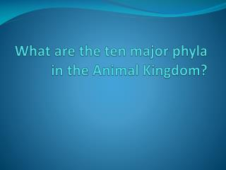 What are the ten major phyla in the Animal Kingdom?